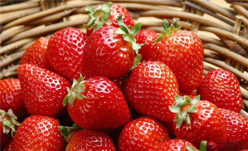 成都草莓航空航空货运
